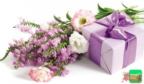 Những món quà sinh nhật ý nghĩa cho bạn gái