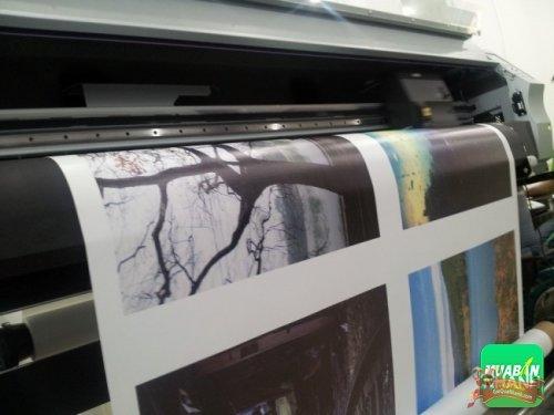 In tranh canvas từ ảnh chụp - thực hiện bởi Công ty TNHH In Kỹ Thuật Số - Digital Printing Ltd